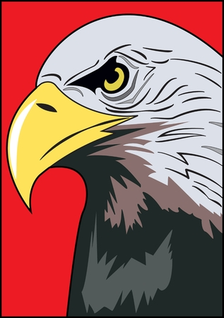 Head of eagle, color image of an eagles head with a curved beak on a red background