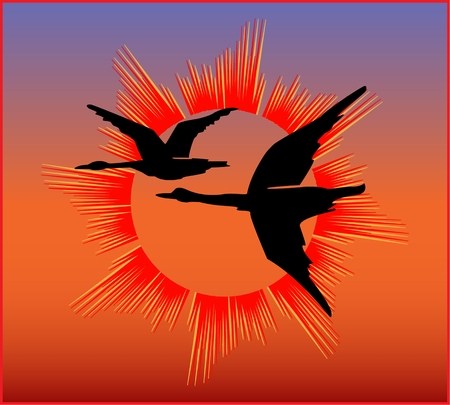 FLUING SHADOOFS ON THE SUNSET BACKGROUND colored abstract stylized image of flying shadoofs on sunset background