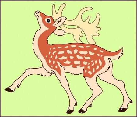BABY DEER color animal background illustration