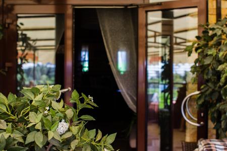 Flowers in a glass veranda