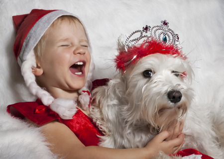 laughing girl in Santas cap with white dog photo