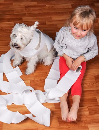 tearing down: Naughty child and white schnauzer puppy dog sitting on a floor and playing with  roll of toilet paper Stock Photo