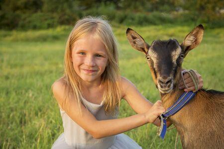 Little blonde girl outdoor in nature hugs brown goat. Sunset light. Happy childhood