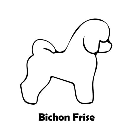 Bichon Frise Dog silhouette and breed name on white background. Logotype isolated vector illustration