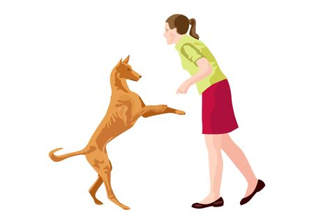 Young woman playing with dog Ibizan Hound in the park. Human and dog friendship. Vector illustration on white background 向量圖像