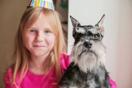 A happy blond girl celebrates her dog s Miniature Schnauzer birthday. Party, cake, friendship. Stock Photo