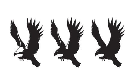 eagle Stock Vector - 11545732