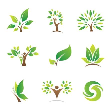 albero della vita: Albero della vita logo e icona Vettoriali