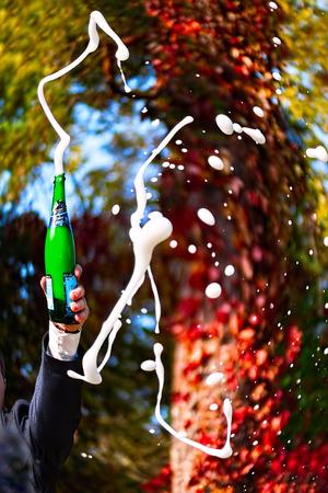 Festive champagne at a wedding Zdjęcie Seryjne