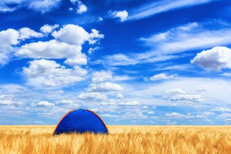 美しい雲の下の麦畑にあるテント