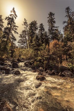 Mountain river destroys everything in its path Zdjęcie Seryjne