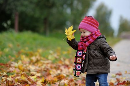 yellow jacket: Nice little baby in an autumn park Stock Photo