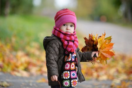 Nice little baby in an autumn park photo