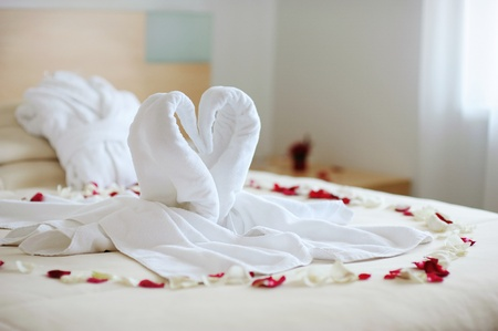 Towel swans left by a hotel room service photo