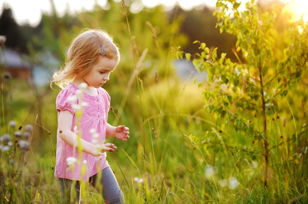 Adorable little girl in a meadow at summer or autumn Stock Photo - 11557538