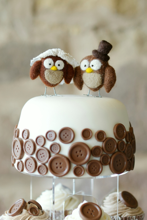 afternoon fancy cake: Decorative owls on top of stylish wedding cake