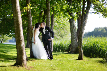 nude bride: Beautiful bride and groom by a tree
