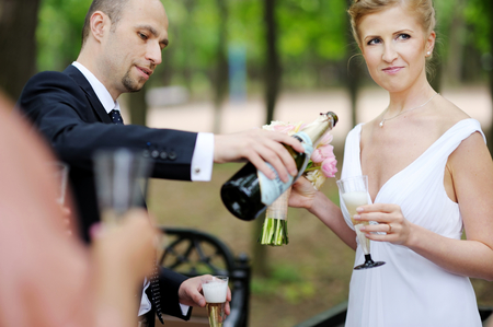 boomers: Wedding guests toasting happy bride and groom