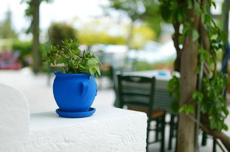greek pot: Tipico cortile greca con blu vaso di fiori su Kos