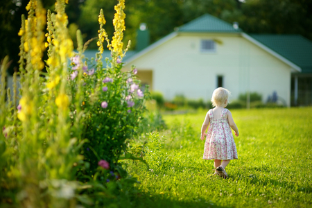 Adorable toddler girl in romantic dress in a garden photo