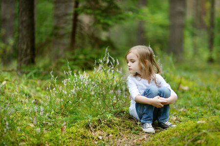 mushroom picking: Adorable little girl hiking in the forest on summer day