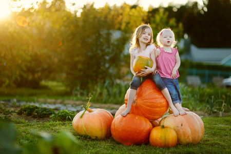 pumpkin patch: Two little sisters sitting on a huge pumpkins on a pumpkin patch