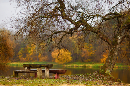 idyllic: Idyllic autumn scenery in Lithuania