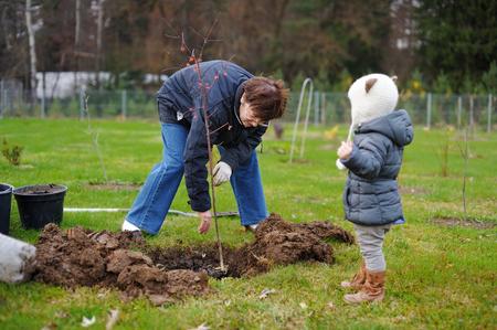 plantando un arbol: Adorable ni�a y su abuela de plantar un �rbol