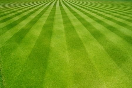cut grass: Perfectly striped freshly mowed garden lawn in summer Stock Photo