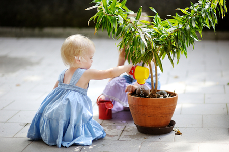 regar las plantas: Niña linda que riega una planta en una maceta