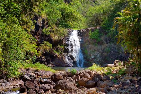 Beautiful tropical waterfall in Waimea Valley park on Oahu island Banco de Imagens - 41118329