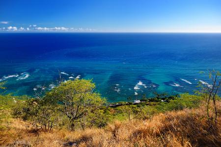 overlook: Oceanfront houses in Oahu island, Hawaii
