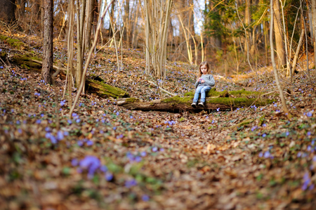 hepatica: Adorable little girl picking the first flowers of spring Stock Photo