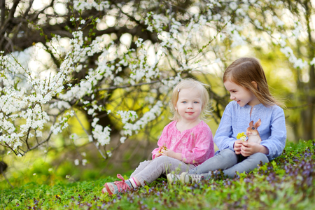 Two adorable little sisters playing with Easter eggs in blooming spring garden on Easter day photo