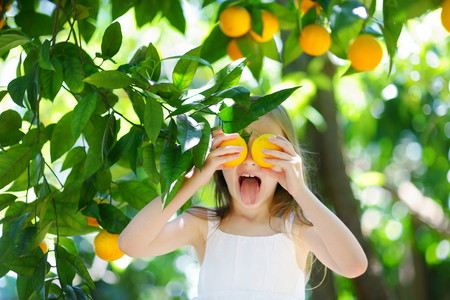 naranja arbol: Adorable niña recogiendo naranjas maduras frescas en naranja soleado jardín de árboles en Italia Foto de archivo