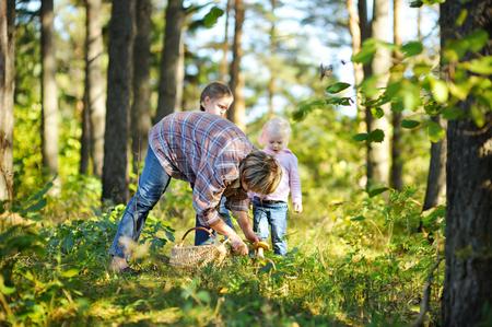 Abuela y sus dos pequeños nietos recogiendo setas en el bosque Foto de archivo