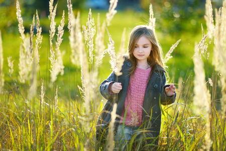 bebes lindos: Portrait of a cute little girl on beautiful golden autumn day
