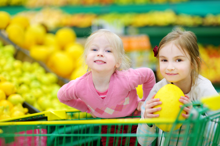 grocery cart: Cute little sisters shopping in a food store or a supermarket
