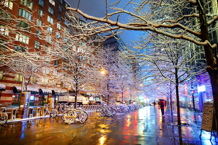 Winter snowfall in New York, USA Foto de archivo