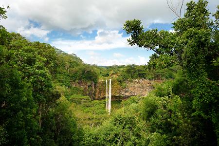jungla: Escénico Chamarel cae en la selva de la isla Mauricio Foto de archivo