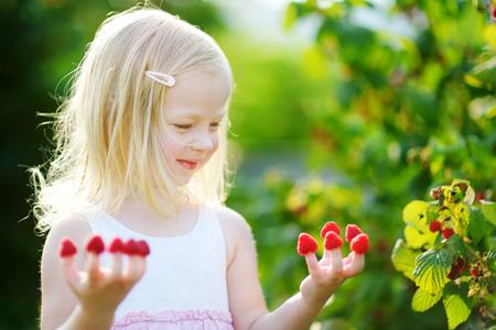 raspberry dress: Adorable little girl eating raspberries off her fingers