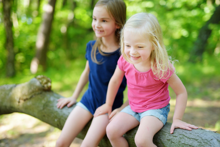 adorable child: Two adorable little sisters hiking in a forest on warm and sunny summer day