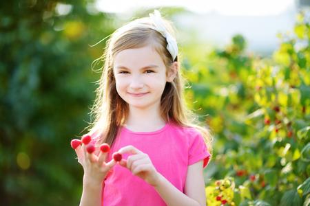 raspberry dress: Adorable little girl eating raspberries off her fingers on bright summer day