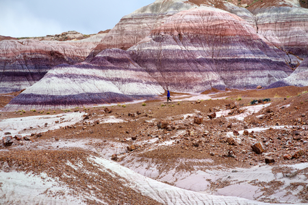 mesa: Stunning striped purple sandstone formations of Blue Mesa badlands in Petrified Forest National Park, Arizona, USA