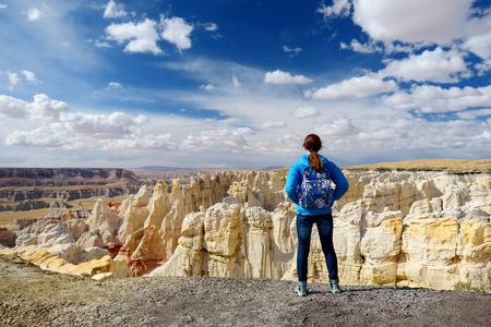 hopi: Hiker admiring views of stunning colorful sandstone formations of Coal Mine Canyon, Arizona, USA Stock Photo