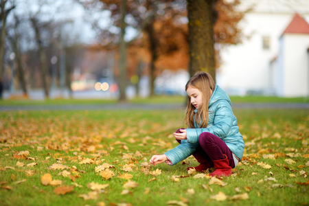 crafting: Little girl gathering acorns for crafting and playing on beautiful autumn day outdoors
