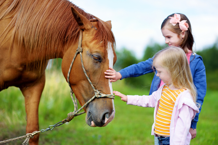 petting: Two cute little sisters petting a horse in countryside on beautiful summer day