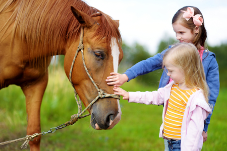 two stroke: Two cute little sisters petting a horse in countryside on beautiful summer day