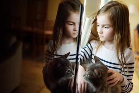stoking: Cute little girl stroking her pet cat by the window at home