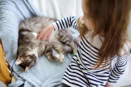 Cute little girl stroking her pet cat at home